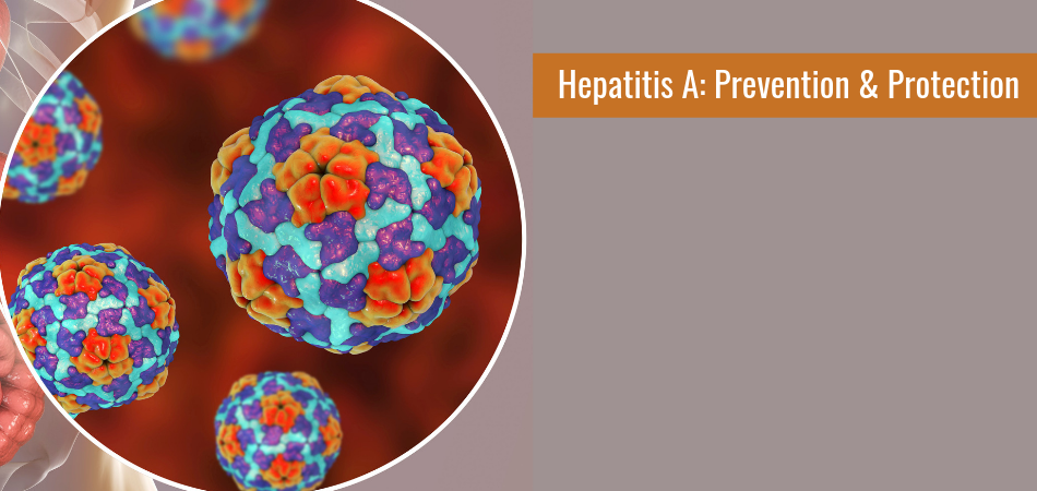 Learn about Hepatitis A